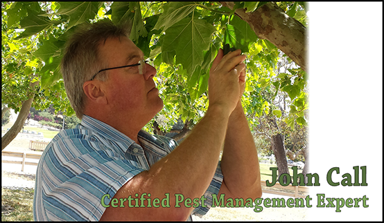 Tree Health Care - PPM Inc. Certified pest management expert